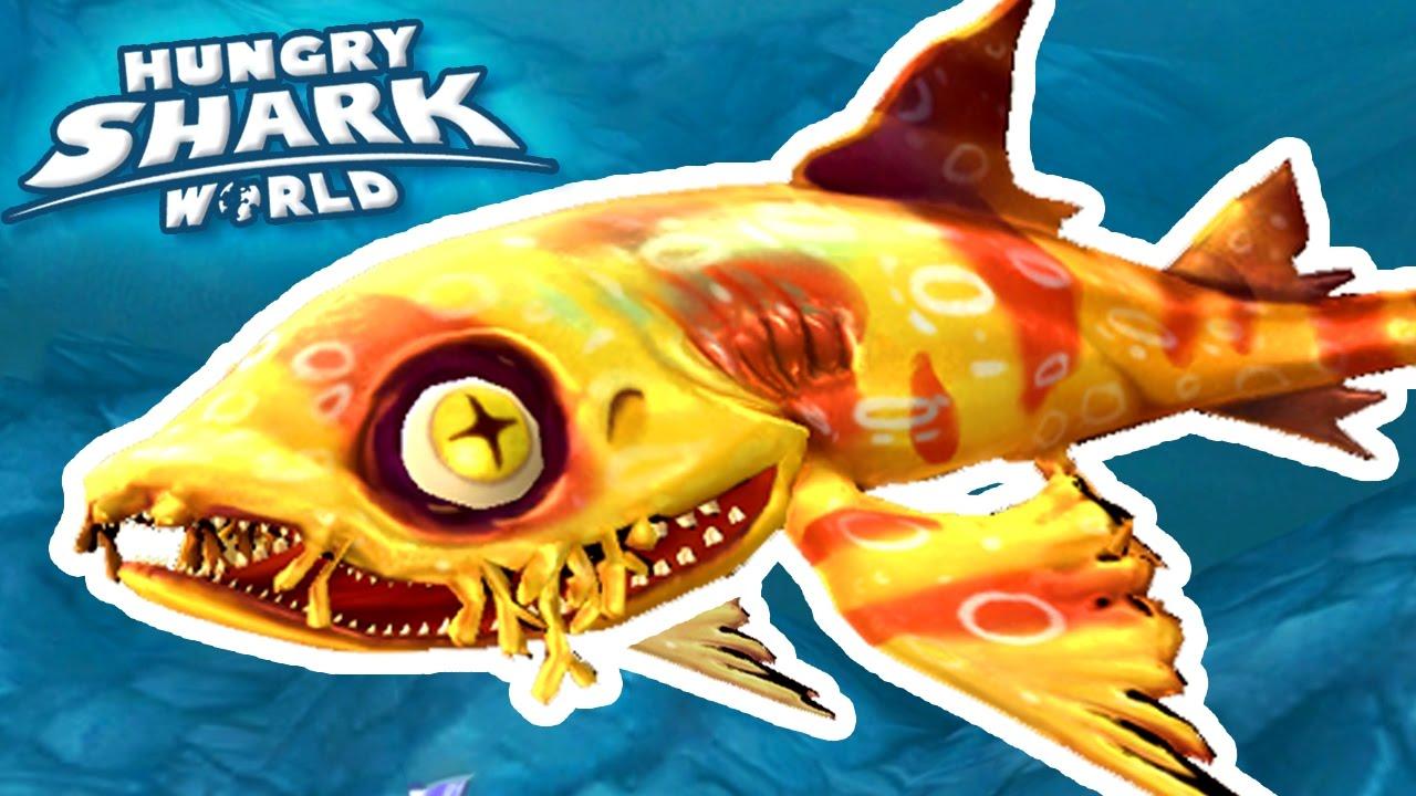 new shark wobbegong hungry shark world ep 37 hd youtube