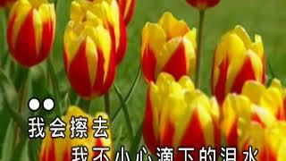 0401浪人情歌