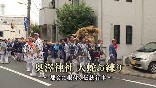 奥澤神社 大蛇お練り ~都会に根付く伝統行事~
