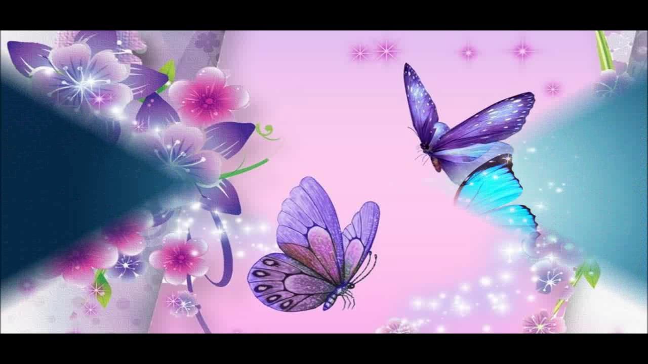 Beautiful Butterfly Wallpapers Hd Pictures Youtube