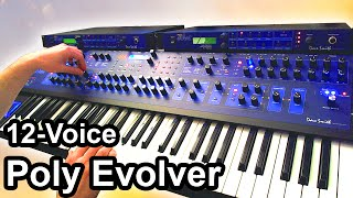 DSI POLY EVOLVER (12 Voices) - Beautiful Ambient Space Music - Dave Smith Instruments 【SYNTH DEMO】