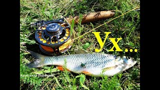 Рыбалка 2018 на реке Десне ловля жереха голавля на нахлыст