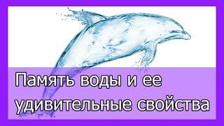 Память воды   удивительные свойства воды