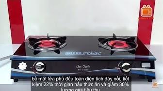 Bếp ga hồng ngoại BLUESTAR NG-5790BC, Infrared Burner Gas Stove Cooker