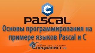 Основы программирования и структура кода на примере языков Pascal и Cи