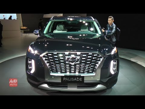 2020 Hyundai Palisade Quick First Look|Walk Around Video
