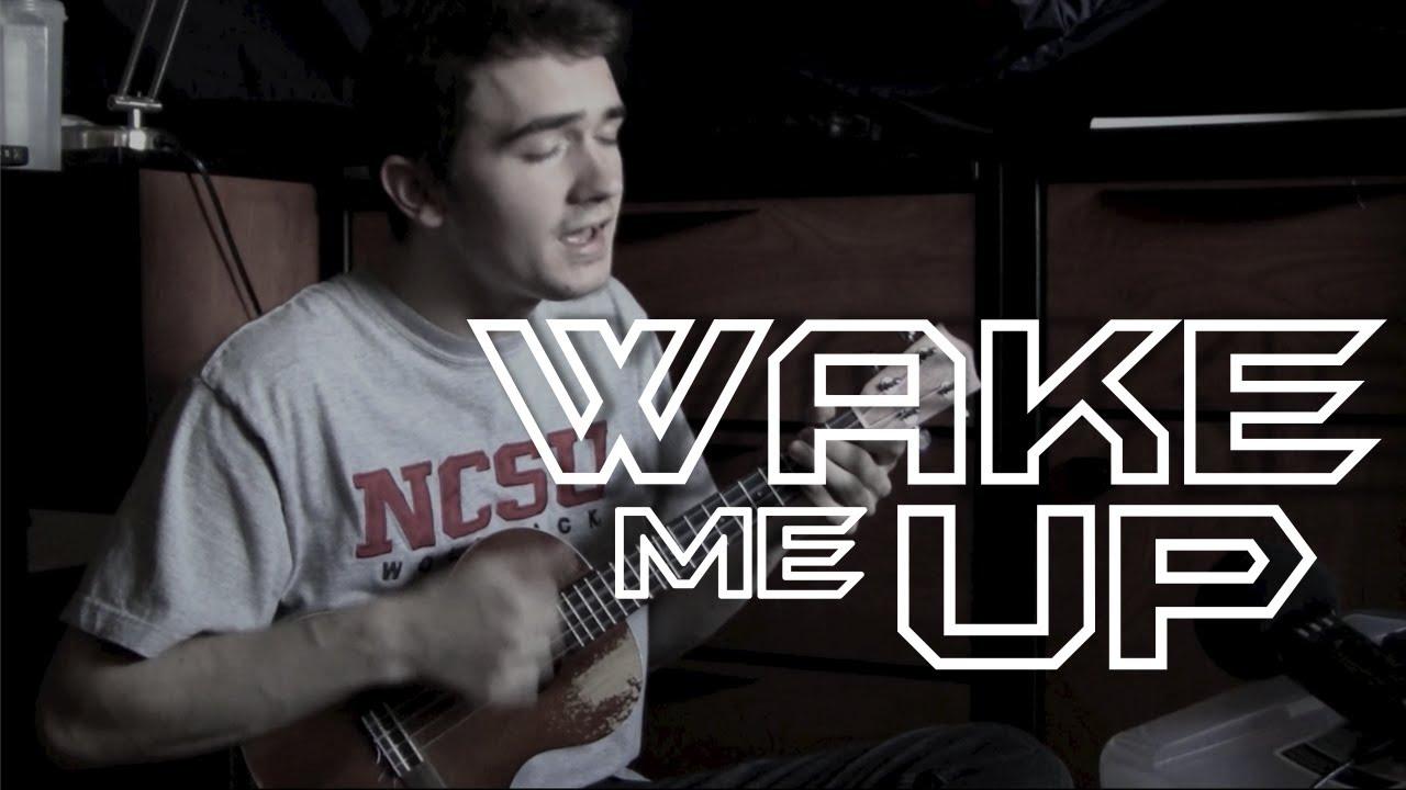 Wake me up avicii ukulele cover youtube wake me up avicii ukulele cover hexwebz Images