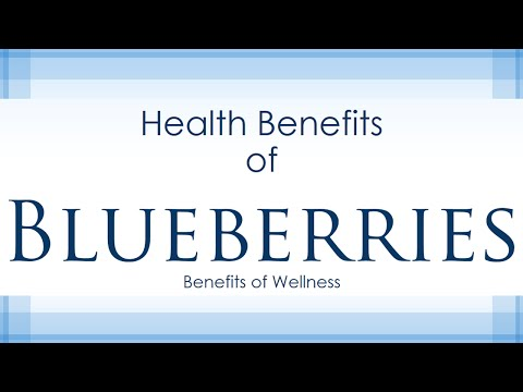 Health Benefits of Blueberries - Amazing and Super Fruits - Benefits of Wellness