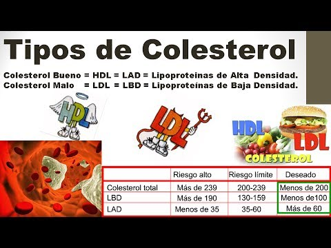 Tipos de Colesterol - ldl colesterol