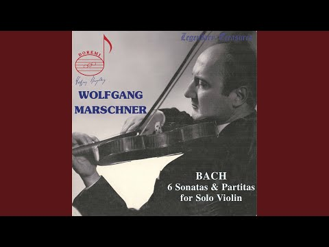 Violin Partita No. 2 in D Minor, BWV 1004: I. Allemande