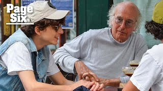 Timothée Chalamet and Larry David's 'iconic' lunch drives fans wild   Page Six Celebrity News