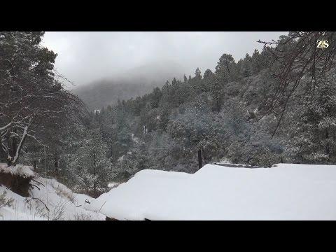 Nieve en la Sierra de Arteaga