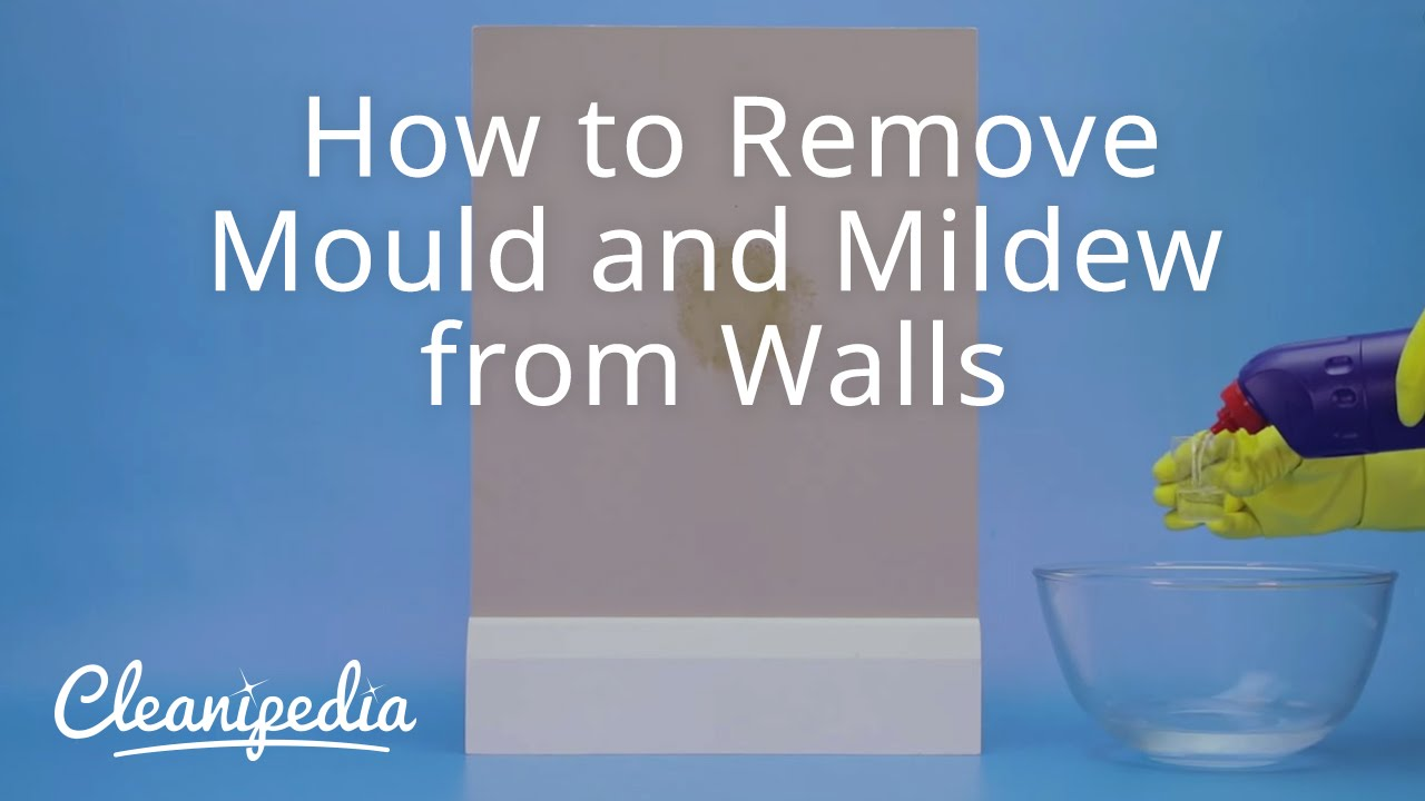 how to remove mold from how to remove black mold from a bathroom ceiling mold growing on. Black Bedroom Furniture Sets. Home Design Ideas