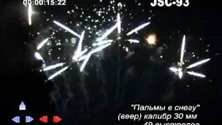 Пальмы в снегу JSC-93