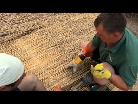 Укладка камышовой крыши