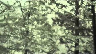Moto-cross Pierre-Pertuis 1965,Musique: Bel Hubert