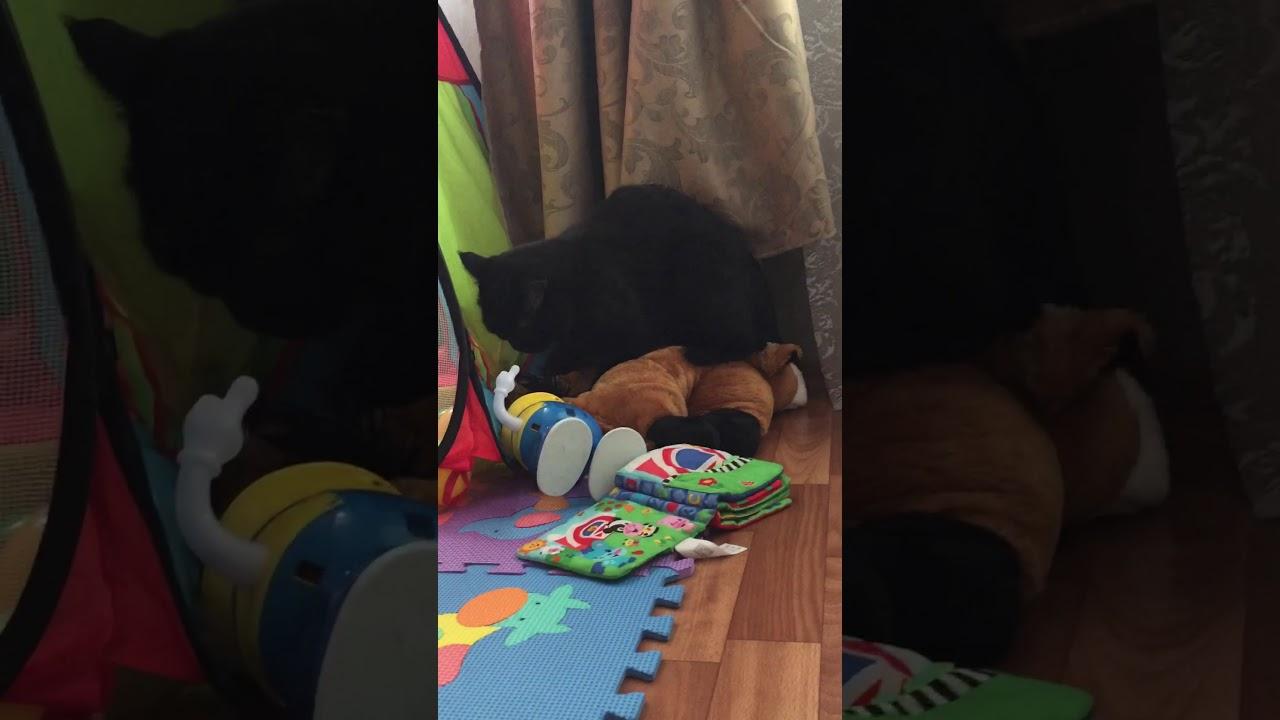 Дрючит подушку
