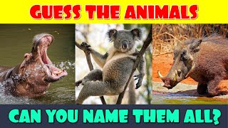 Guess the Animal Quiz | Animals Quiz | Name the Animal Game | What Animal Is This Quiz