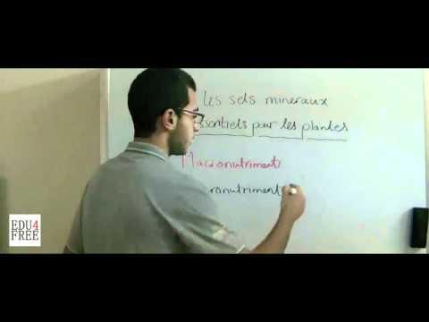 La Biologie - Chapitre 1 - Les sels mineraux essentiels - edu4free