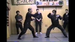Soke Masaaki Hatsumi and Hard Training
