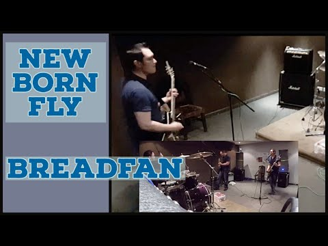The band playing Breadfan