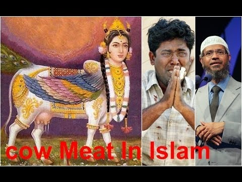 Why Muslim Eat Cow Meat Hindu Wept infront of Dr Zakir Naik fight with dr zakir naik (muslim eat cow