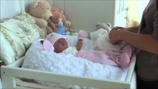 Reborn baby doll Buggy