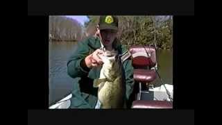 BASS FISHING TIPS AND VIDEOS ONLINE THE BASS COLLEGE