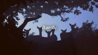 Clairo- Bambi (Lyrics/Sub. Español)