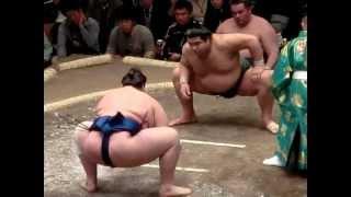 大相撲一月場所初日。 (間違って消してしまったので再アップ)