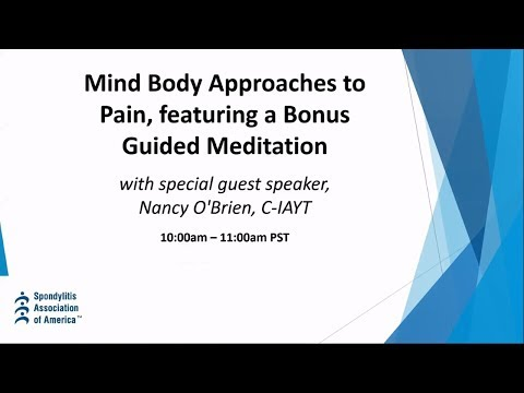 Mind Body Approaches to Pain and A Bonus Guided Meditation