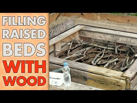 HUGELKULTUR Raised Garden Beds   AMAZING Way To Fill RAISED BEDS CHEAP – Using Wood