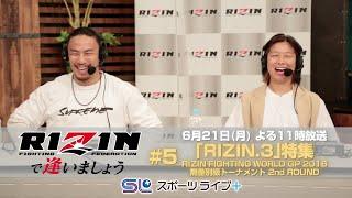 「RIZINで逢いましょう」〜RIZIN.3〜  by スカパー! | トレーラー