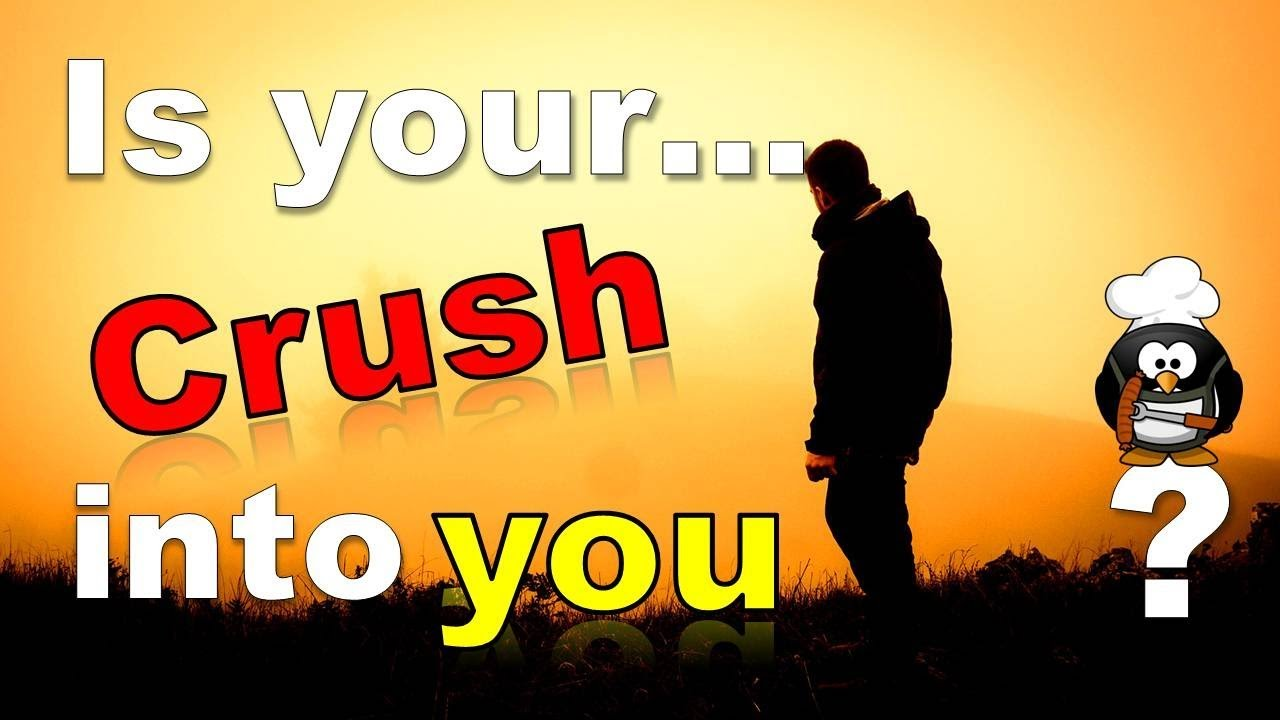 Is your crush into you quiz