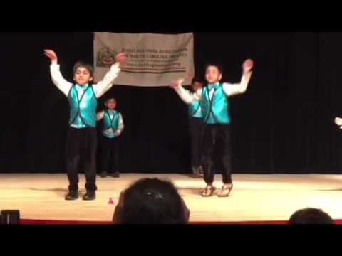 Aryan Heritage India performance