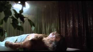 Invasion of the Body Snatchers (1978) Pod Body Opens Its Eyes
