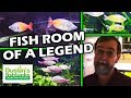Legend Mr. Gary Lange's Fish Tank Room Tour - Setting up a fish room