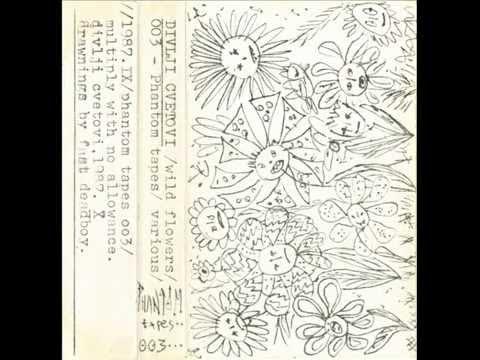 VA - Divlji Cvetovi (1987)