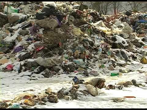 ТРК РАІ: Звозять звідусіль: на Горденківщині проблеми зі сміттєзвалищем