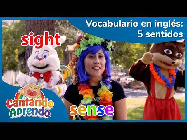 The five senses | Vocabulario en inglés | Aprende los cinco sentidos | Cantando Aprendo