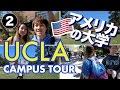 Download 雰囲気よすぎる米大学のキャンパス🇺🇸 UCLA!〔#538〕#ちか友留学生活