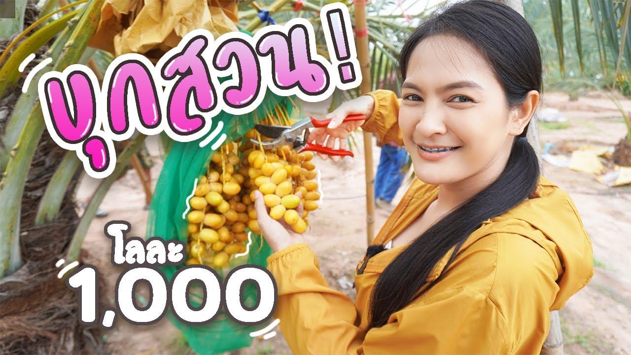โลละ1,000 บุกสวนชิม!!
