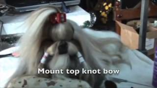 Shih Tzu Grooming New Products Part 2