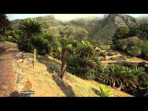 Lucrative black market threatens South Africa's fauna