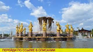 авиабилеты домодедово москва санкт
