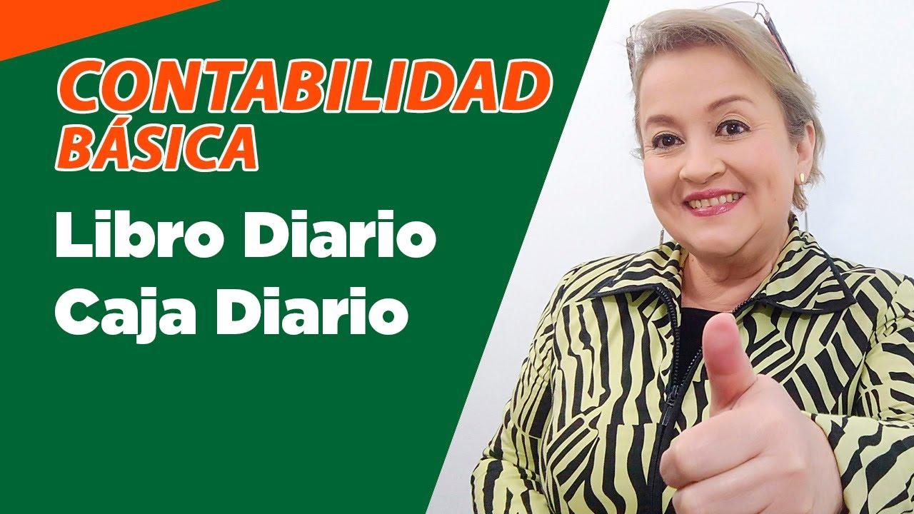 28. Libro Diario_Caja Diario 4/6 : ElsaMaraContable - YouTube