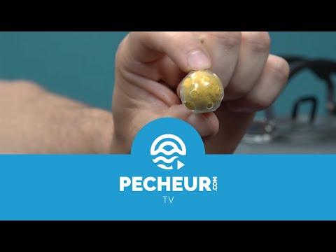 Comment protéger les bouillettes contre les écrevisses et les poissons-chats ? Tutoriel Pecheur.com