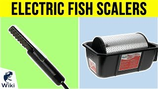 5 Best Electric Fish Scalers 2019