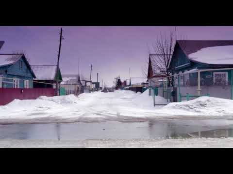 Зимний Мичуринск