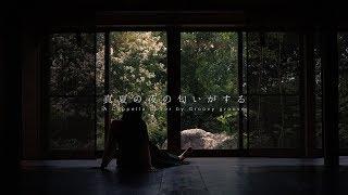 【アカペラ】真夏の夜の匂いがする - あいみょん|Cover by Groovy groove